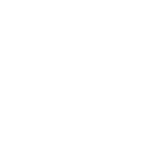 dvv-international